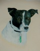 Izzy by J.Tindale Watercolour
